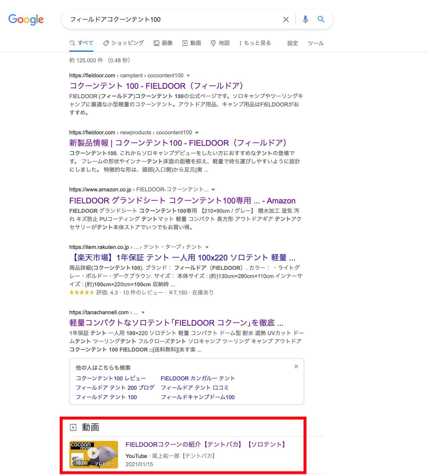 youtube_camp_FIELDOOR google search